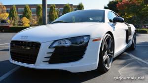 HD Car Wallpaper - Audi R8 - Car Journals